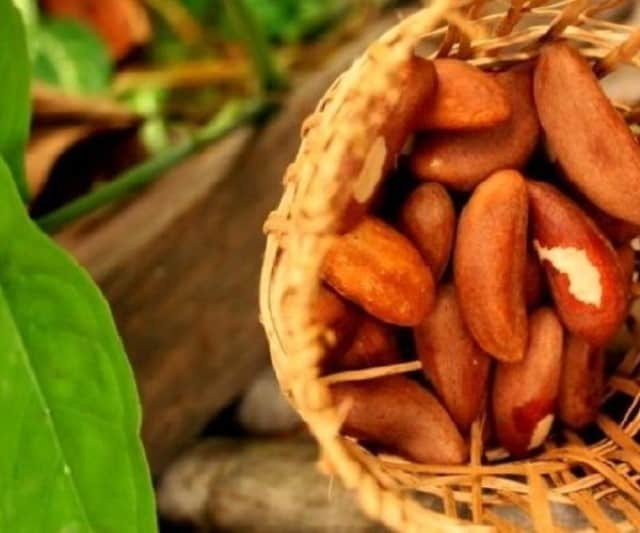 Important Benefits of Brazil Nuts for Psoriasis